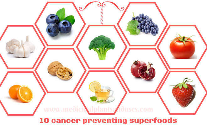 10 cancer preventing superfoods