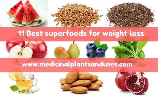 11 Best superfoods for weight loss in your diet plans