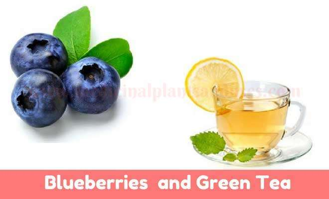 Blueberries and green tea for hair