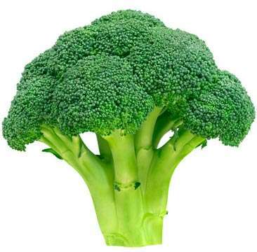 Broccoli for cancer