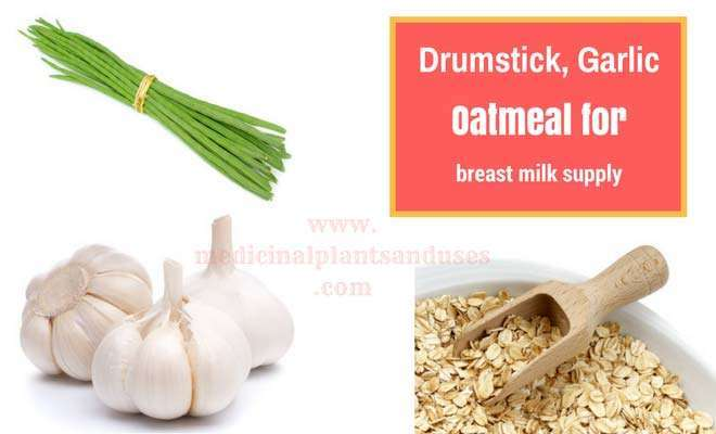 Drumstick garlic oatmeal to Increase Breast Milk Production