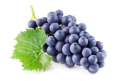 Grapes for cancer