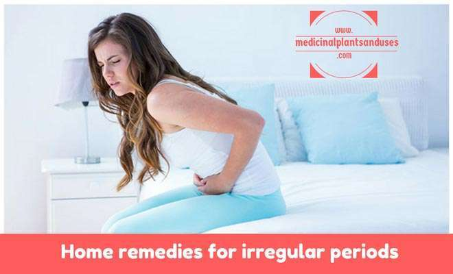 Home remedies for irregular periods natural treatment