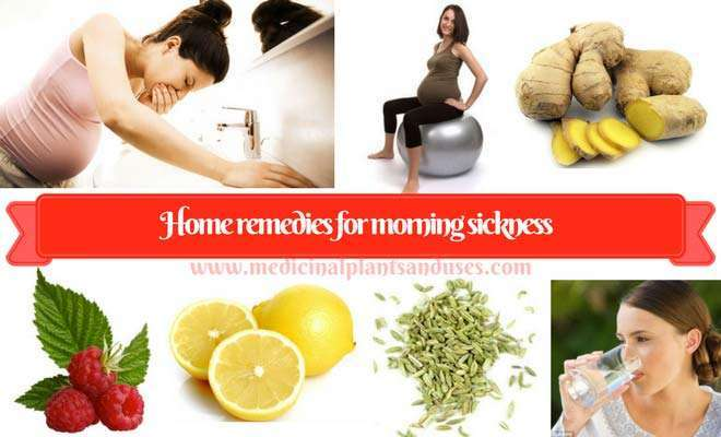 Home remedies for morning sickness & vomiting in pregnancy