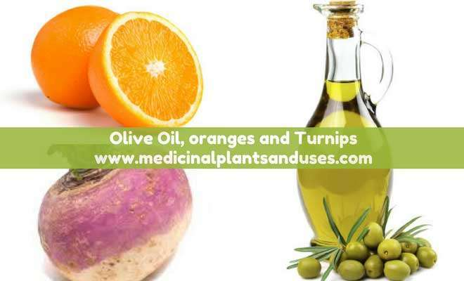 Olive Oil and oranges to boost immunity