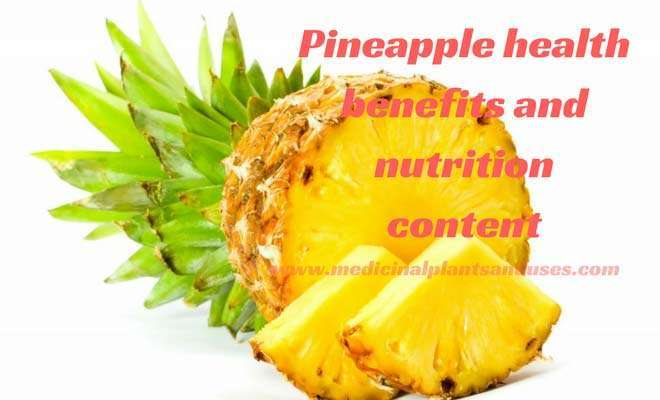 Pineapple health benefits and nutrition content for weight loss