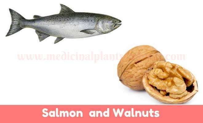 Salmon and walnuts for skin