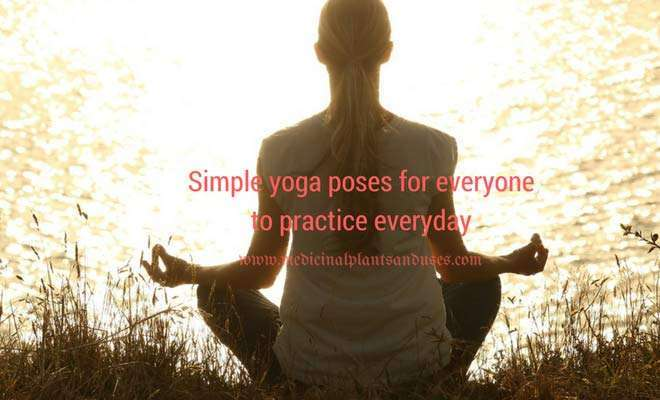 Simple yoga poses for everyone to practice everyday