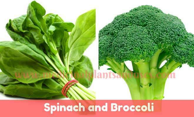 Spinach and Broccoli for skin hair health