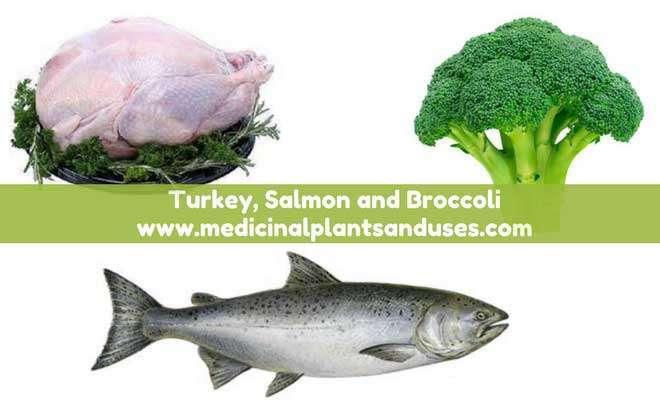 Turkey and salmon to improve immunity power