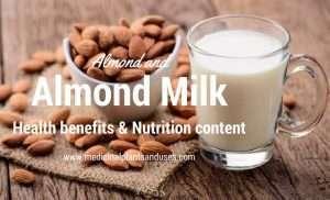 Almond and almond milk health benefits