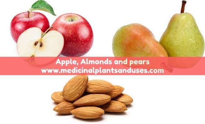 apple, pears and almonds-to-lose-weight