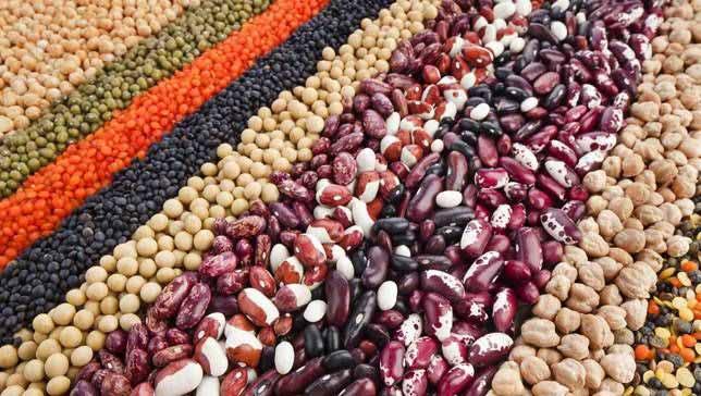 beans cardiovascular health