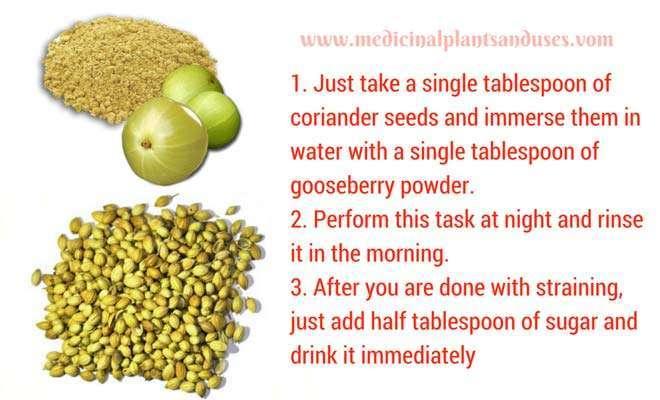 coriander seeds and gooseberry to cure vertigo