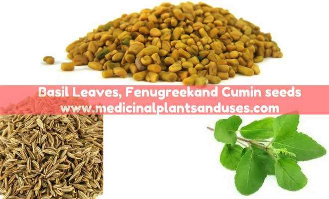 fenugreek cumin seeds for breast milk supply