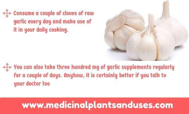 garlic for vaginitis treatment