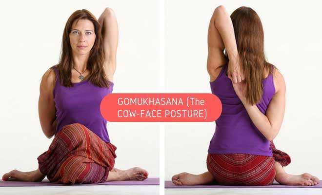gomukhasana (the cow head pose)