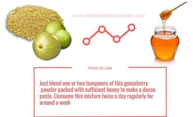 indian gooseberry honey for leucorrhea
