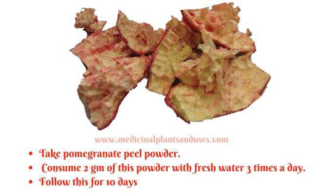 pomegranate peel power for piles treatment