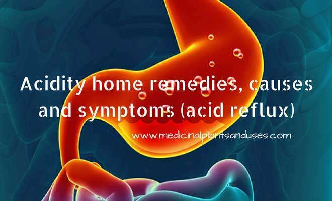 Acidity home remedies, causes and symptoms (acid reflux)
