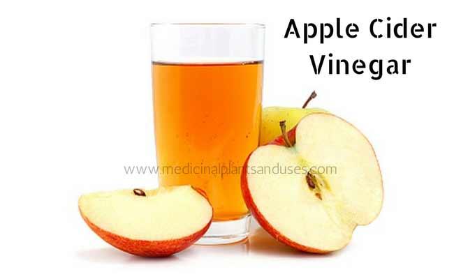 Apple Cider Vinegar for acidity-treatment