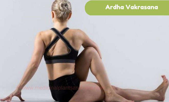 Ardha Vakrasana: Steps, benefits and images (Half spinal twist pose)