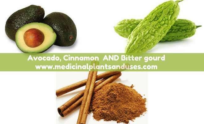 Cinnamon bittergaurd for high blood sugar cure