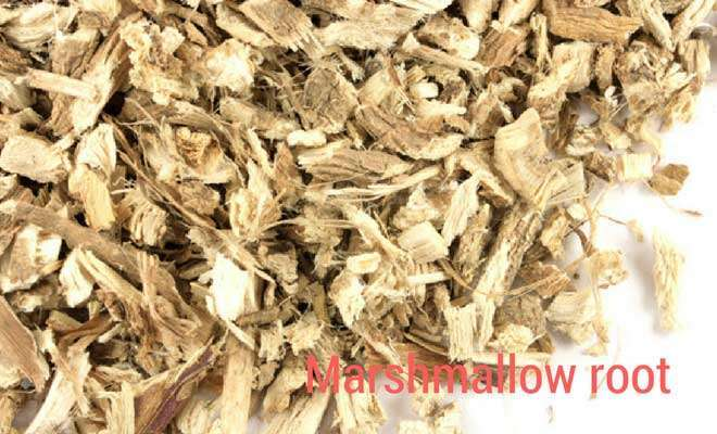Marshmallow root for throat infection
