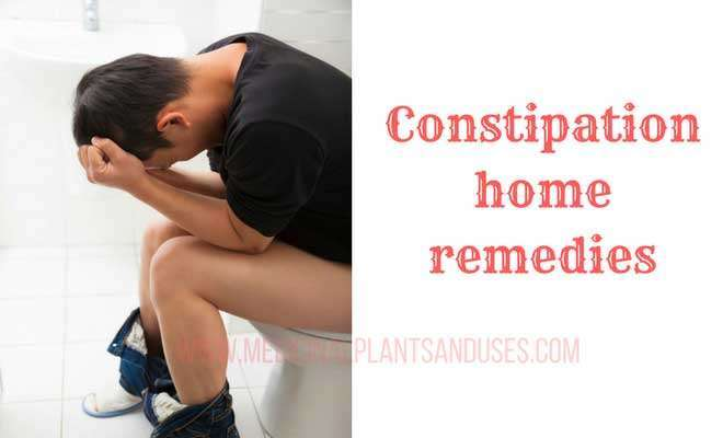 home remedies for constipation treatment