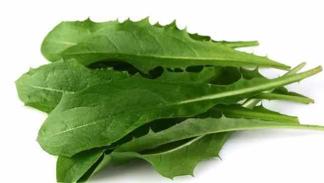 dandelion leaves for constipation