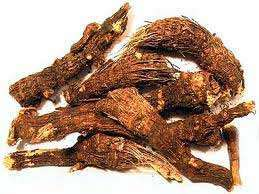 gurmar root