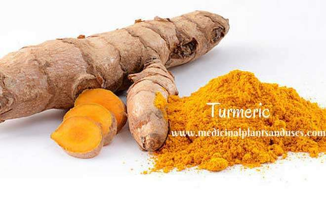 turmeric to cure eczema