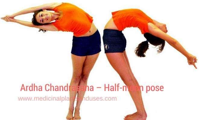 Ardha Chandrasan