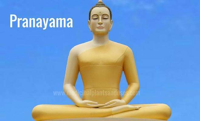 Pranayama benefits and steps