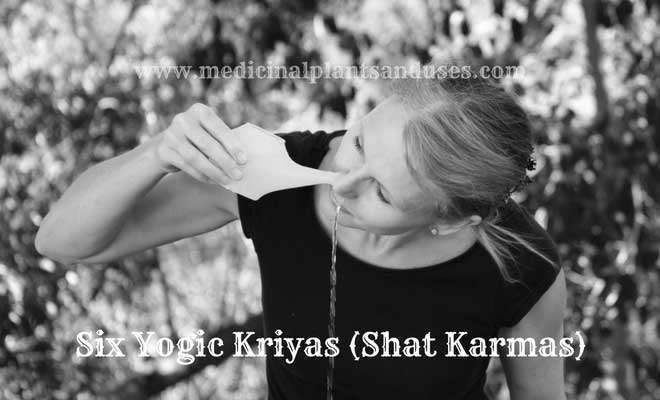 Six Yogic Kriyas (Shat Karmas)