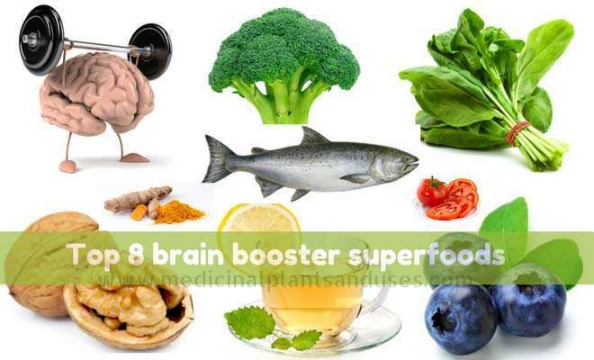 Top 8 brain booster superfoods for improving brain power