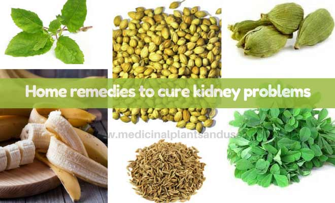 home remedies for kidney diseases
