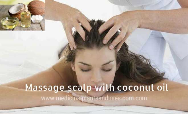 scalp massage with coconut oil