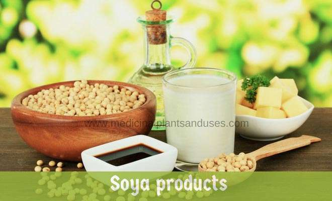soya products for woman