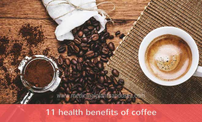 11 health benefits of coffee