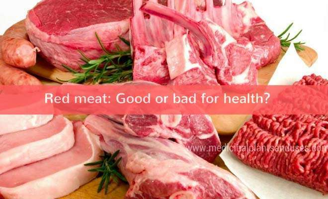 Red meat: Good or bad for health? (advantages and disadvantages)