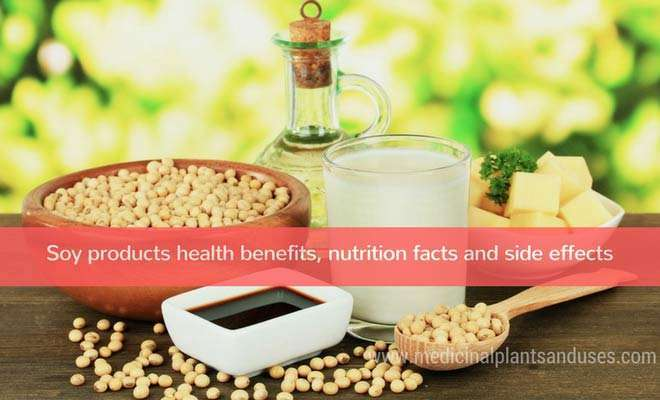 Soy products health benefits, nutrition facts and side effects