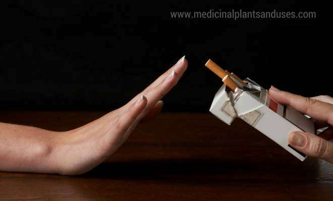 10 effective ways to help you quit smoking naturally