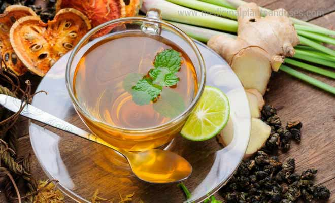 10 Herbal Teas for Good Health
