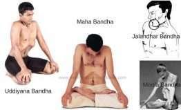 Bandha yoga bandhas