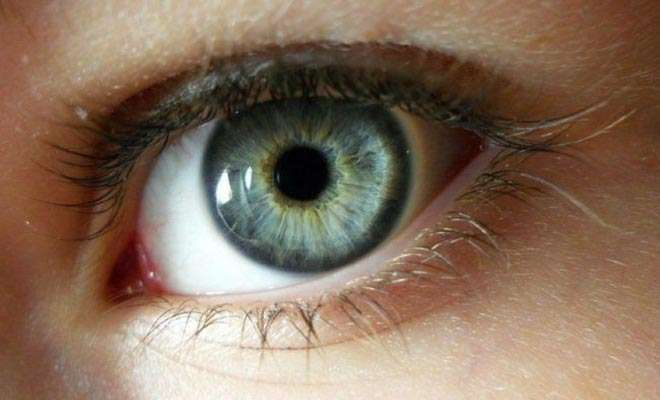 superfoods to improve eyesight