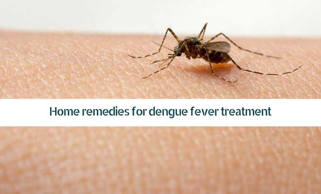 Home remedies for dengue fever treatment