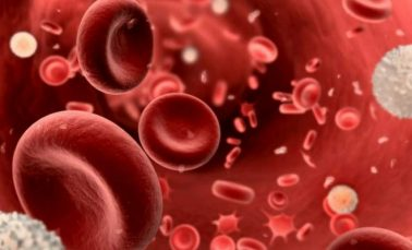 Natural remedies to increase low platelet count (thrombocytopenia)