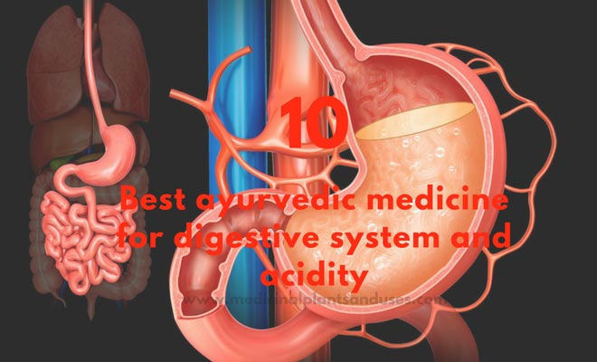 Top 10 ayurvedic medicine for good digestion and acidity