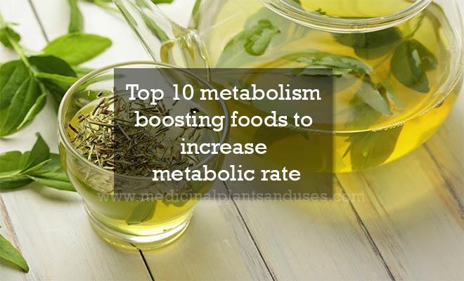 Top 10 metabolism boosting foods to increase metabolic rate